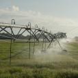Ross Spray Fields (3)