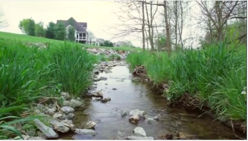 Stormwater goes into local creeks and streams