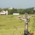 Spray fields to dispose of effluent